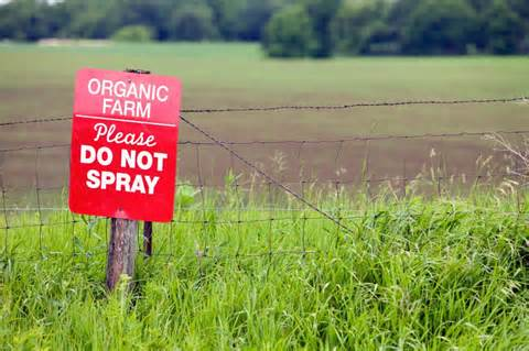 Organic farm featuring no pesticides which is healthy for those trying to control ms and their ms symptoms.